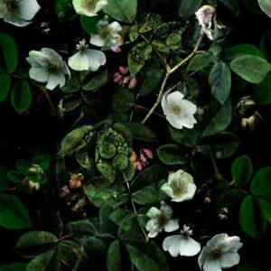 Kews Leafy florals green with hint of Pink - Annette Taylor-Anderson | Blatt Blätter Blumen Blüten floral Laub Natur Pflanzen