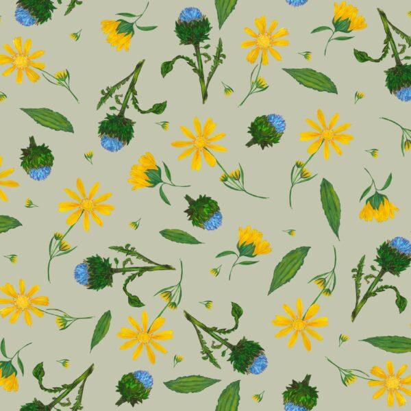 Arnica - Lise Froeliger | Blätter Blumen Blüten floral gelb