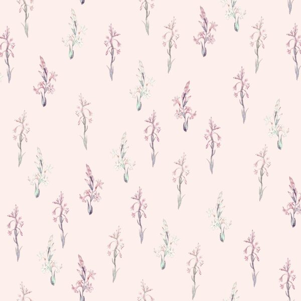 Tuberose (pink) - Lise Froeliger | Blüten botanisch floral Garten pink