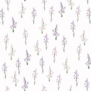 Tuberose (violett) - Lise Froeliger | Blüten botanisch floral Garten rosa