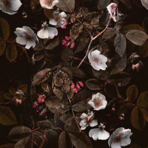Kews Leafy Florals brown - Annette Taylor-Anderson | blossoms floral flowers foliage leaf leaves nature plants