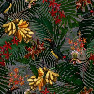 Wallpaper Tucan Tropical Jungle